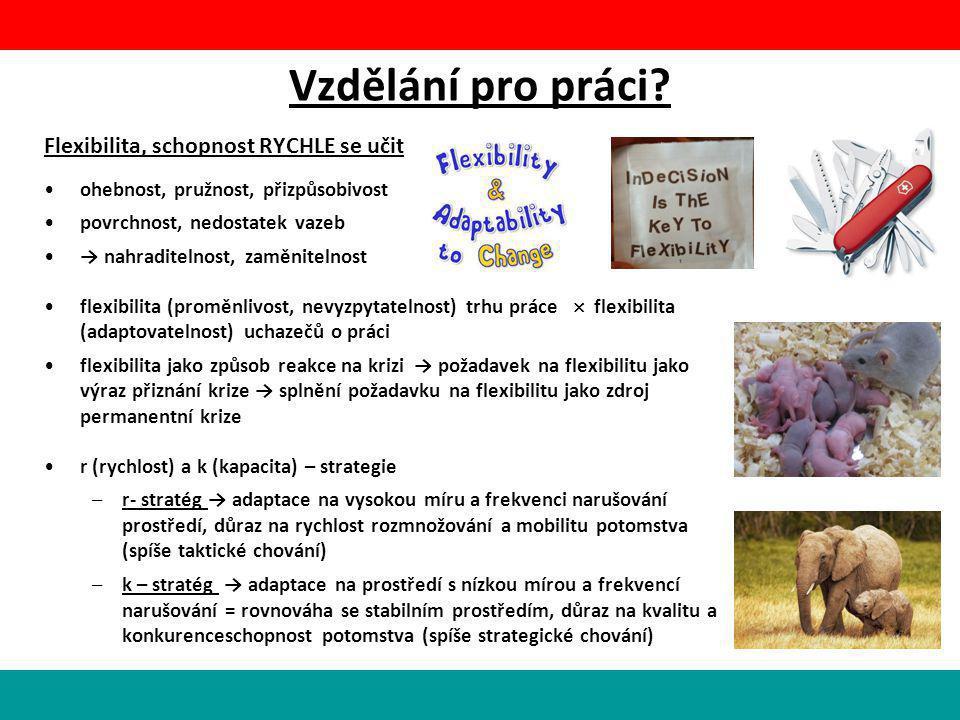 Vzdělání pro práci Flexibilita, schopnost RYCHLE se učit