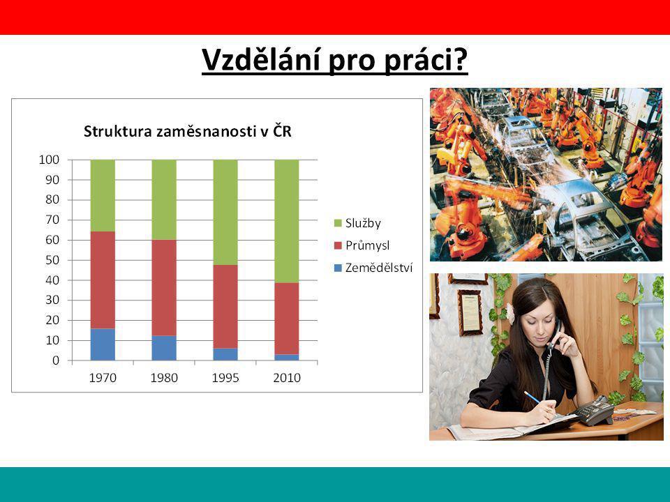 Vzdělání pro práci