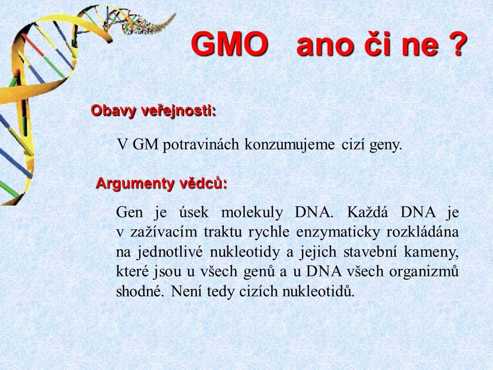 GMO ano či ne V GM potravinách konzumujeme cizí geny.