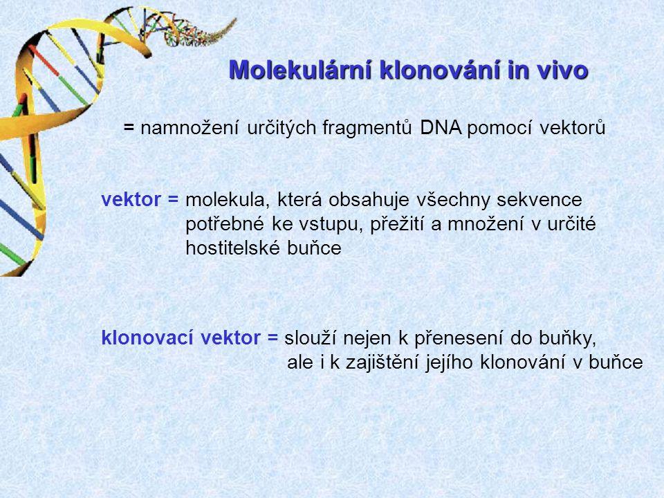 Molekulární klonování in vivo