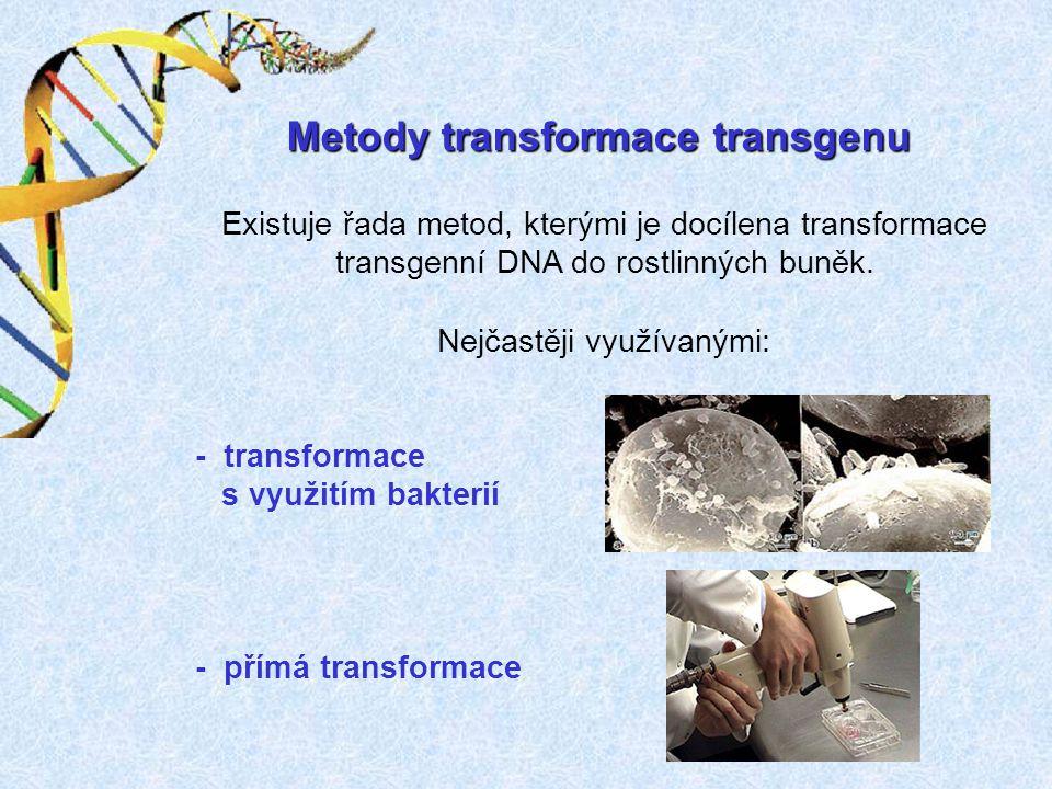 Metody transformace transgenu