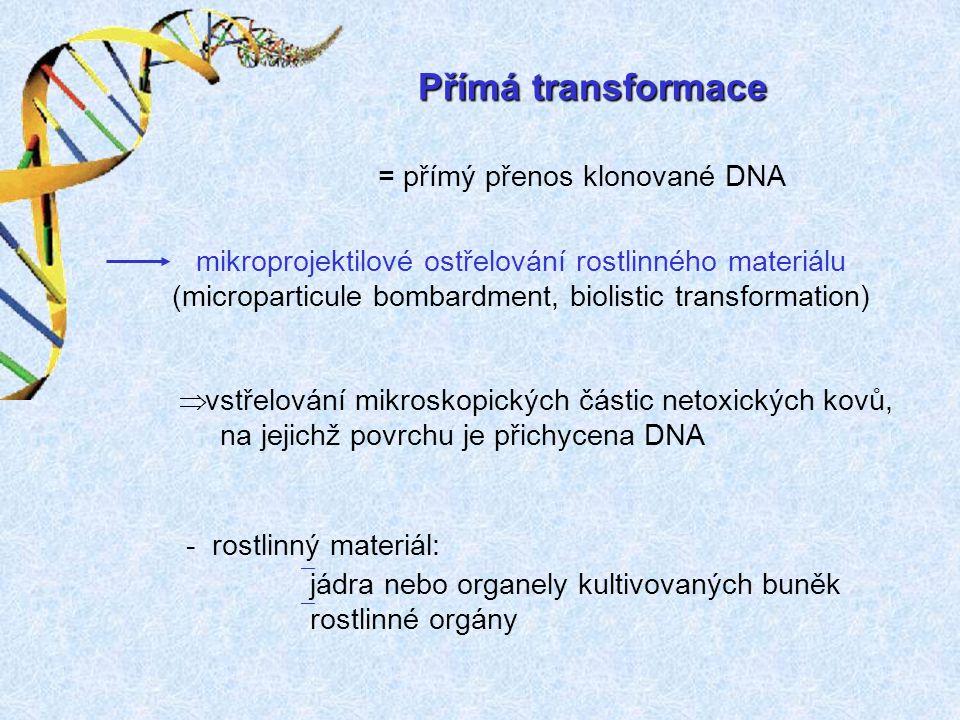Přímá transformace = přímý přenos klonované DNA