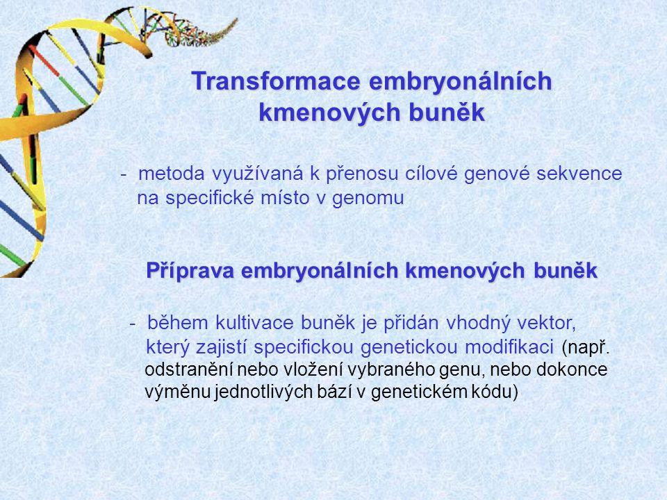 Transformace embryonálních