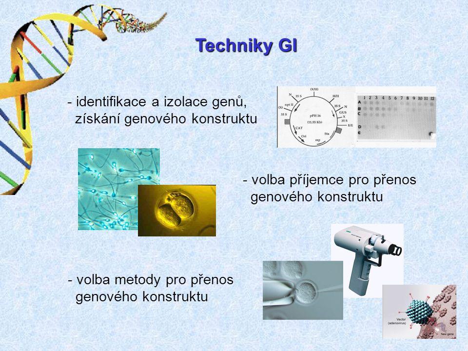 Techniky GI identifikace a izolace genů, získání genového konstruktu