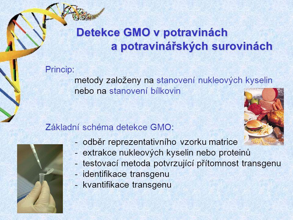 Detekce GMO v potravinách a potravinářských surovinách
