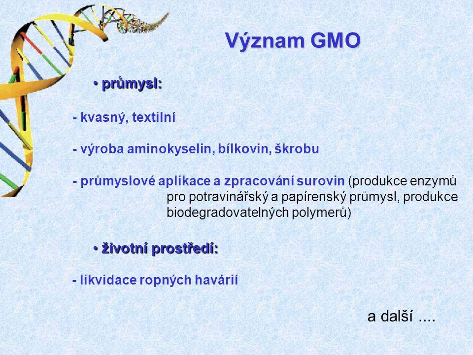 Význam GMO a další .... průmysl: životní prostředí: - kvasný, textilní