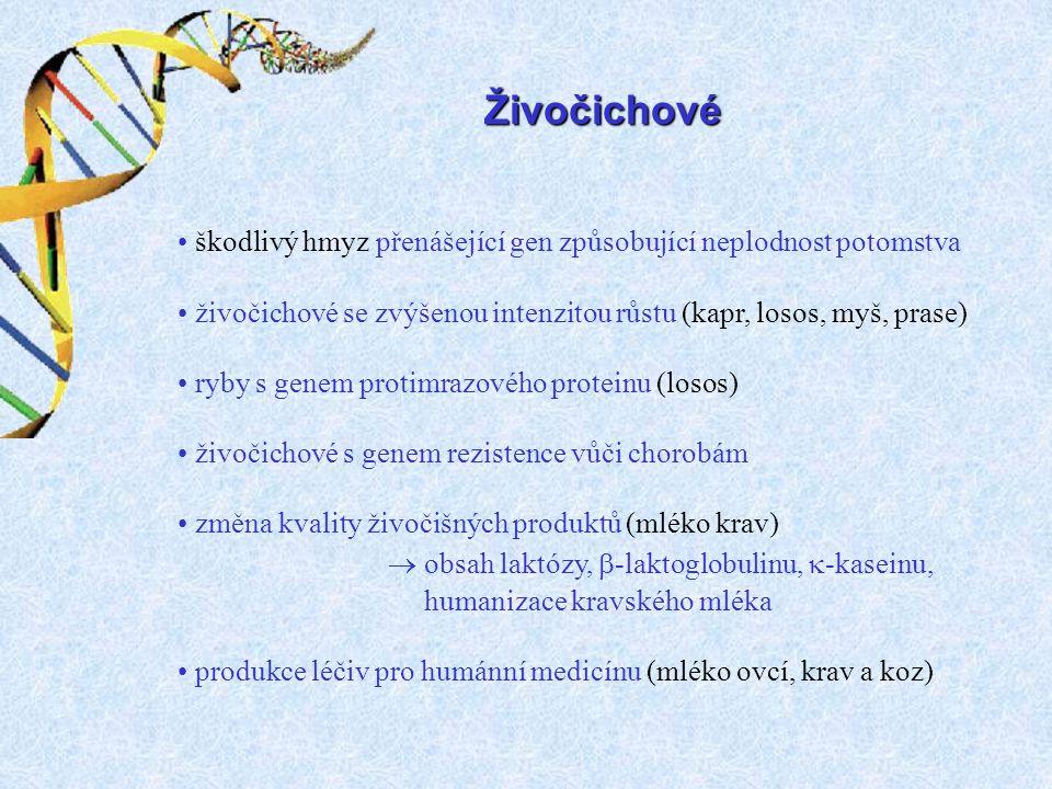 Živočichové  obsah laktózy, -laktoglobulinu, -kaseinu,