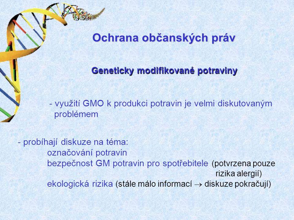 Geneticky modifikované potraviny