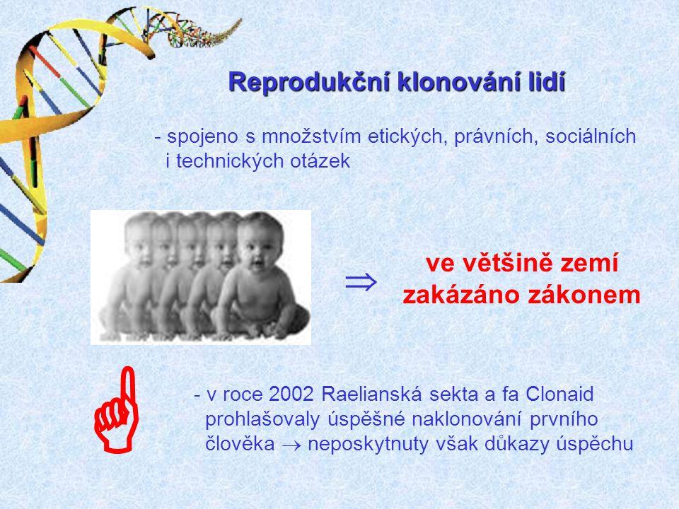  Reprodukční klonování lidí ve většině zemí zakázáno zákonem