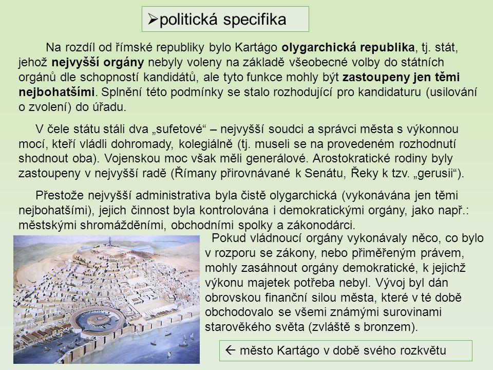 politická specifika