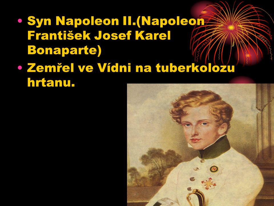 Syn Napoleon II.(Napoleon František Josef Karel Bonaparte)