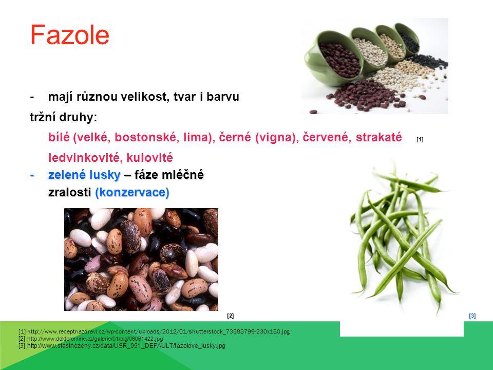 Fazole - mají různou velikost, tvar i barvu tržní druhy: