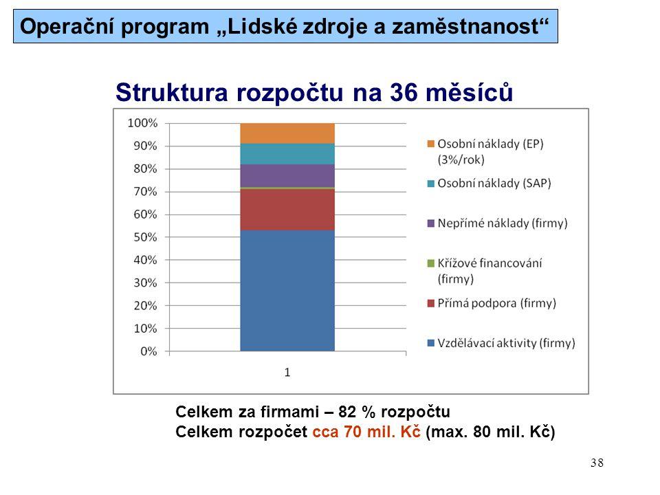 Struktura rozpočtu na 36 měsíců