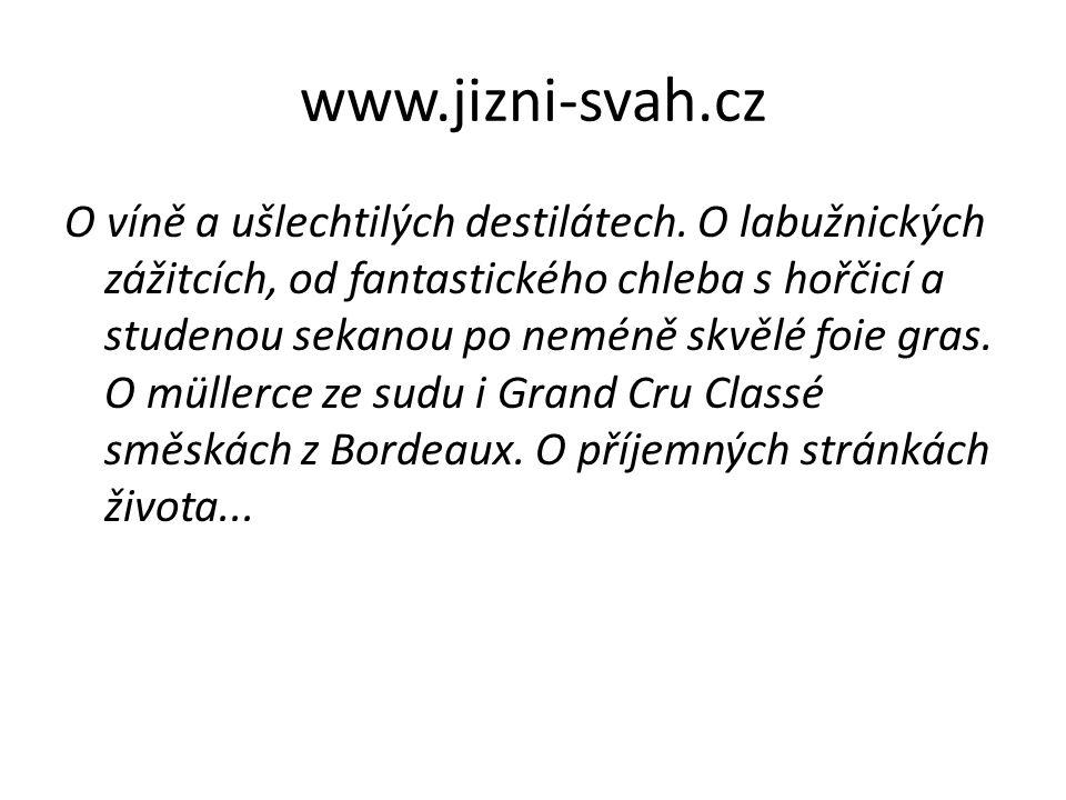 www.jizni-svah.cz
