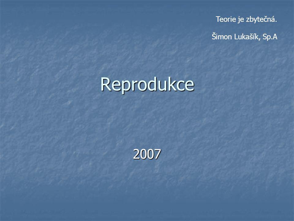 Teorie je zbytečná. Šimon Lukašík, Sp.A Reprodukce 2007