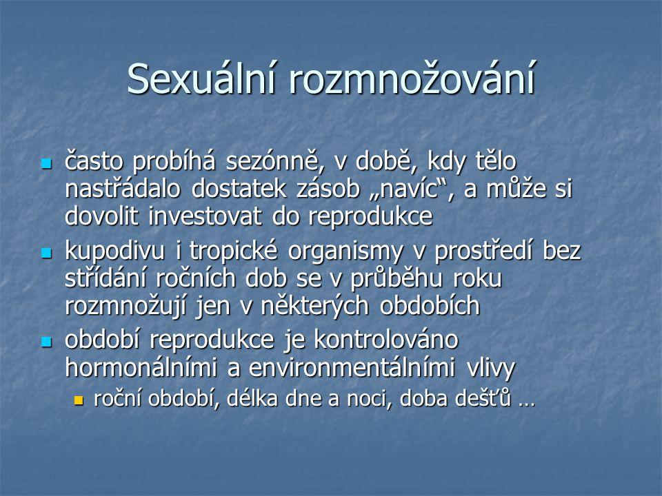 Sexuální rozmnožování