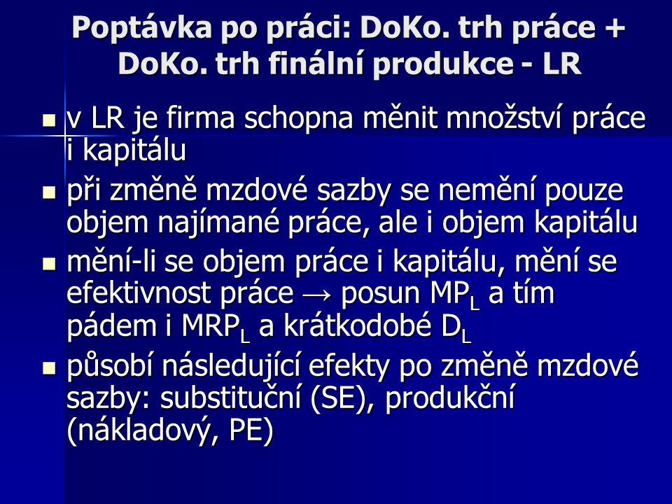 Poptávka po práci: DoKo. trh práce + DoKo. trh finální produkce - LR