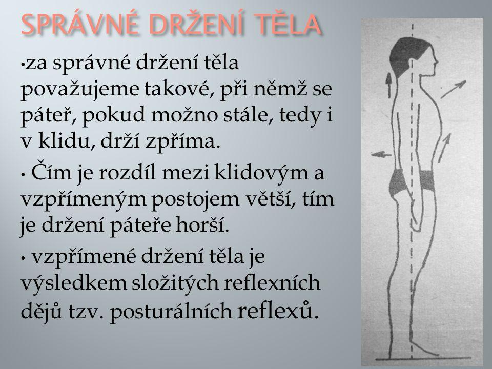 Správné držení těla za správné držení těla považujeme takové, při němž se páteř, pokud možno stále, tedy i v klidu, drží zpříma.