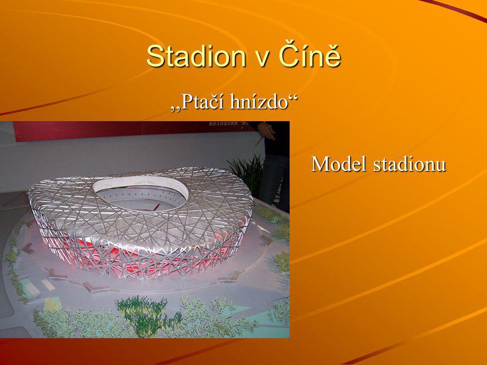 Stadion v Číně ,,Ptačí hnízdo Model stadionu