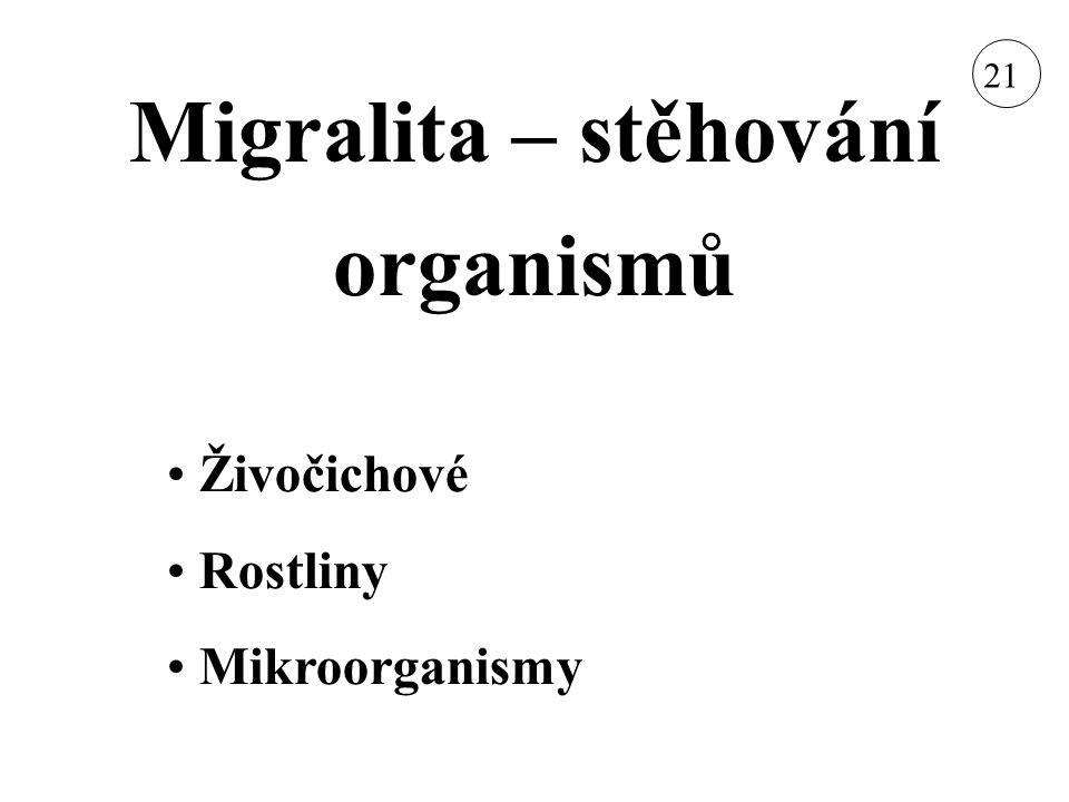 Migralita – stěhování organismů