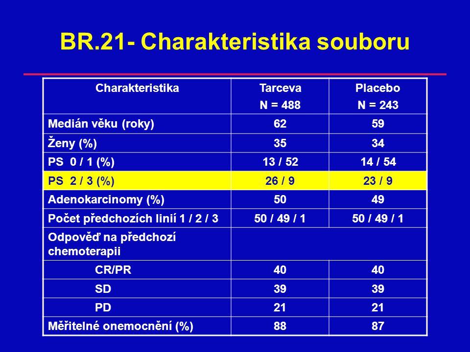 BR.21- Charakteristika souboru