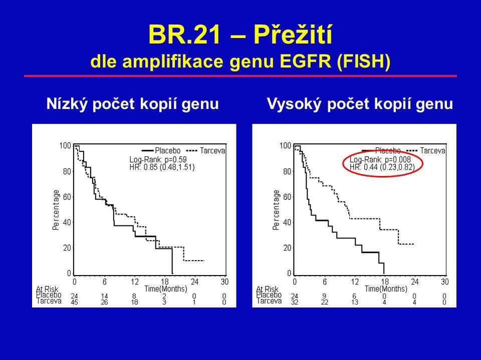 BR.21 – Přežití dle amplifikace genu EGFR (FISH)