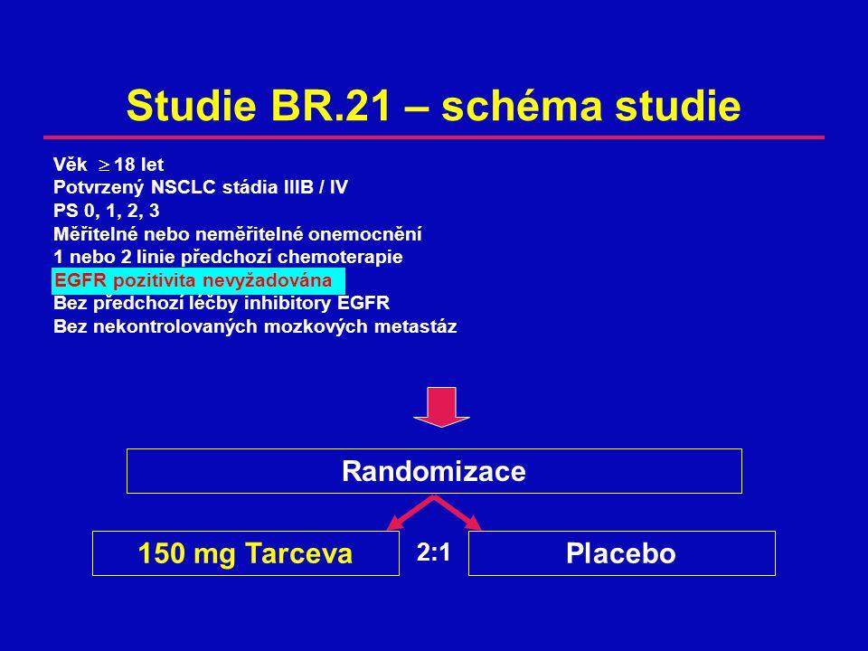 Studie BR.21 – schéma studie