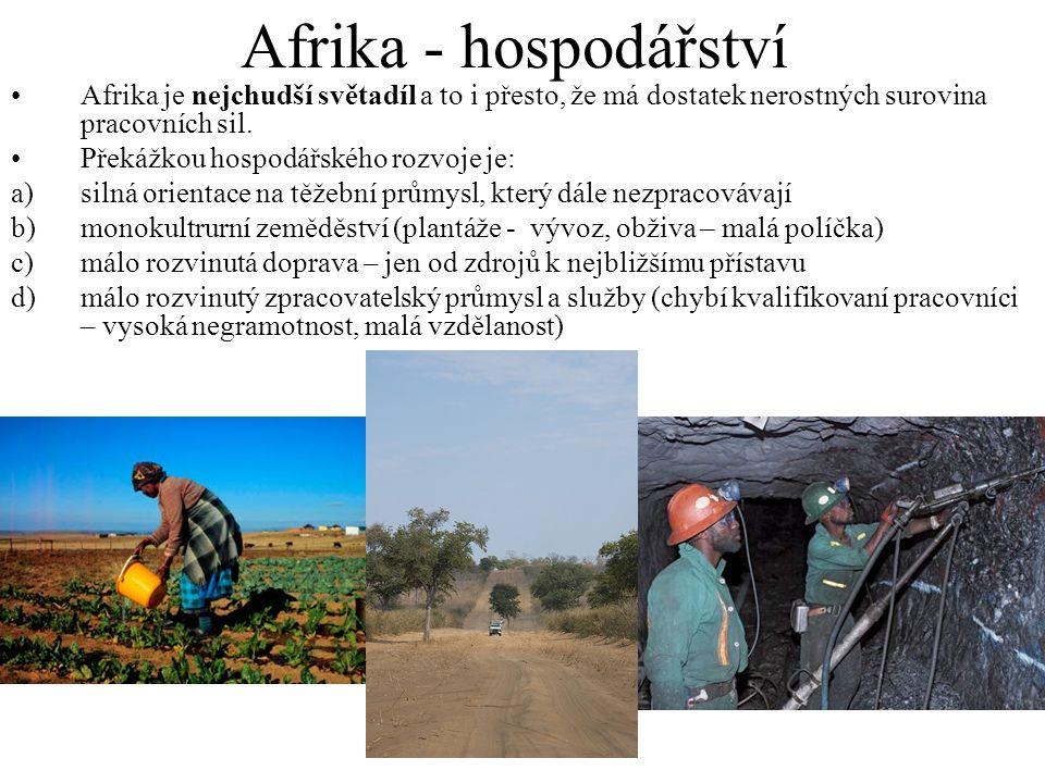Afrika - hospodářství Afrika je nejchudší světadíl a to i přesto, že má dostatek nerostných surovina pracovních sil.