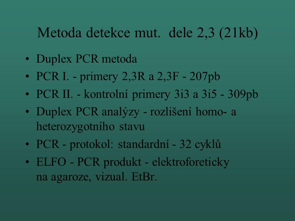 Metoda detekce mut. dele 2,3 (21kb)
