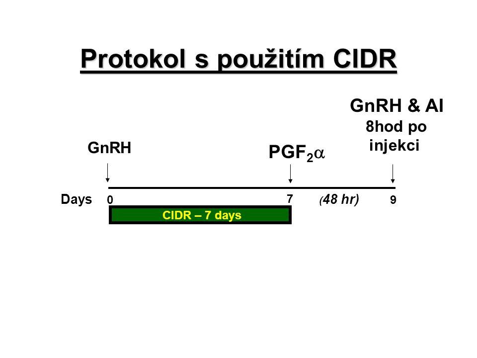 Protokol s použitím CIDR