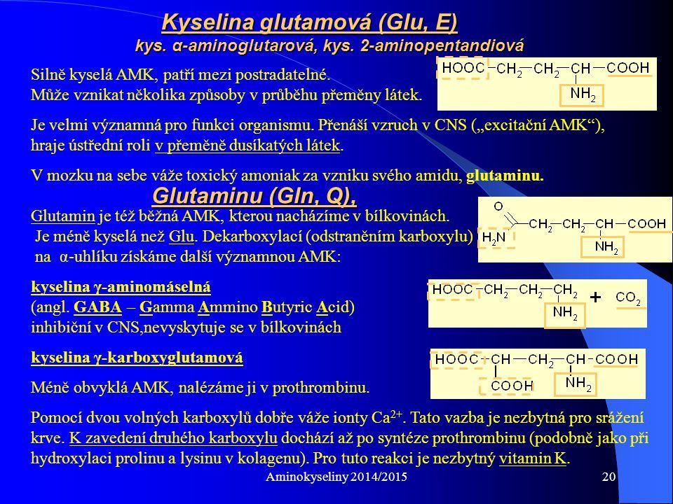 Kyselina glutamová (Glu, E). kys. α-aminoglutarová, kys