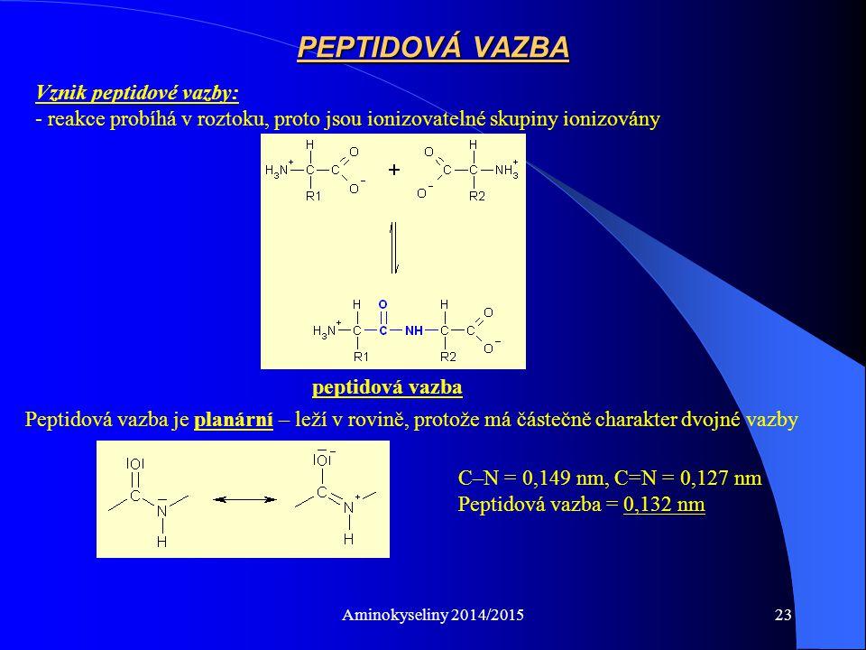 PEPTIDOVÁ VAZBA Vznik peptidové vazby: - reakce probíhá v roztoku, proto jsou ionizovatelné skupiny ionizovány.