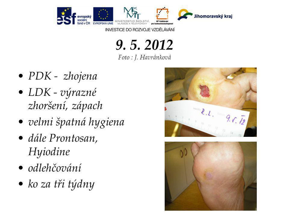 9. 5. 2012 Foto : J. Havránková PDK - zhojena