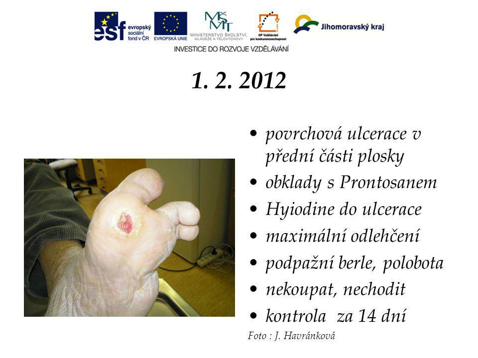 1. 2. 2012 povrchová ulcerace v přední části plosky