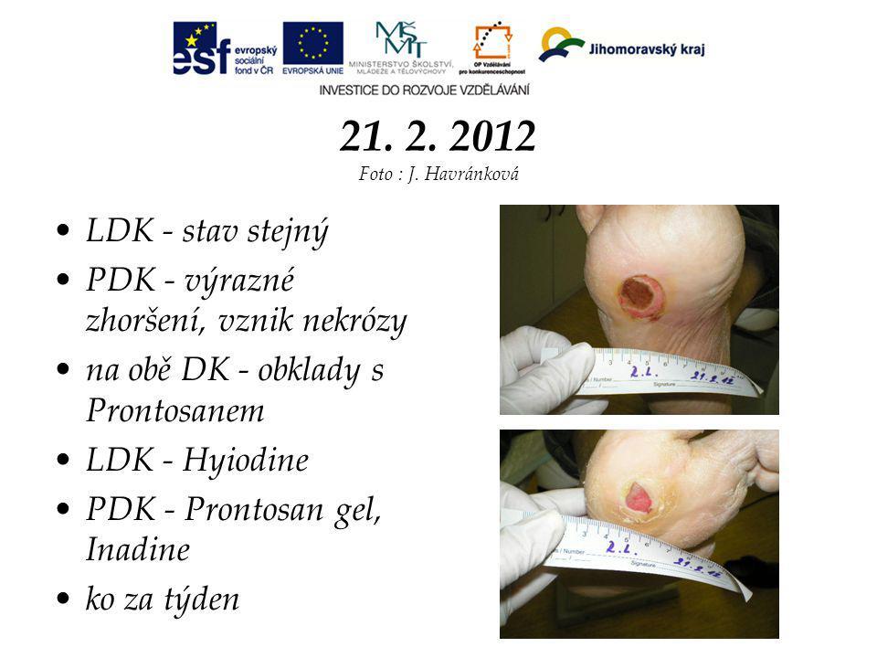 21. 2. 2012 Foto : J. Havránková LDK - stav stejný
