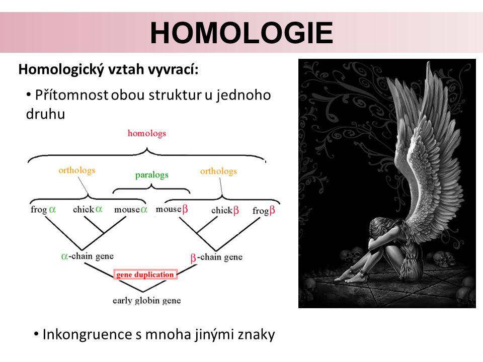 homologie Homologický vztah vyvrací: