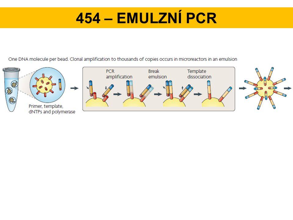 454 – emulzní PCR