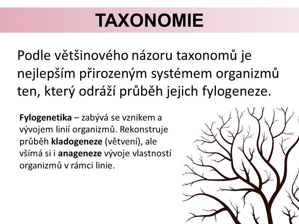 Taxonomie Podle většinového názoru taxonomů je nejlepším přirozeným systémem organizmů ten, který odráží průběh jejich fylogeneze.