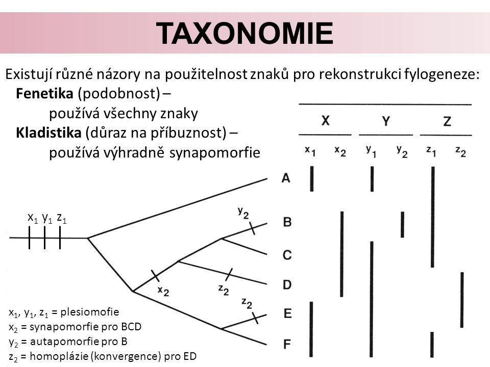 Taxonomie Existují různé názory na použitelnost znaků pro rekonstrukci fylogeneze: Fenetika (podobnost) –