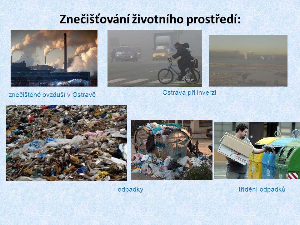 Znečišťování životního prostředí: