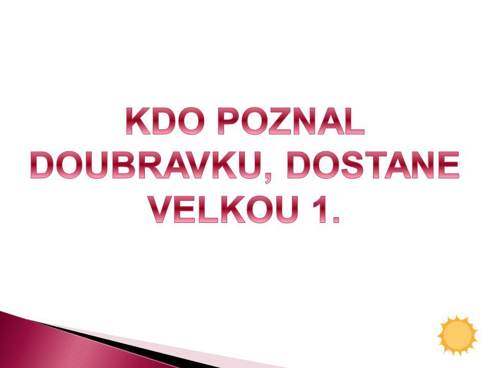 DOUBRAVKU, DOSTANE VELKOU 1.