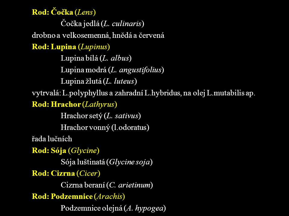 Rod: Čočka (Lens) Čočka jedlá (L. culinaris) drobno a velkosemenná, hnědá a červená. Rod: Lupina (Lupinus)