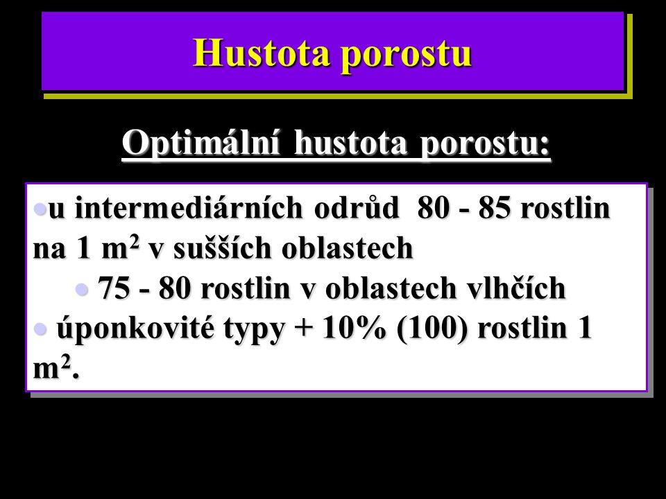Optimální hustota porostu: