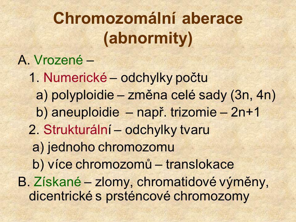 Chromozomální aberace (abnormity)