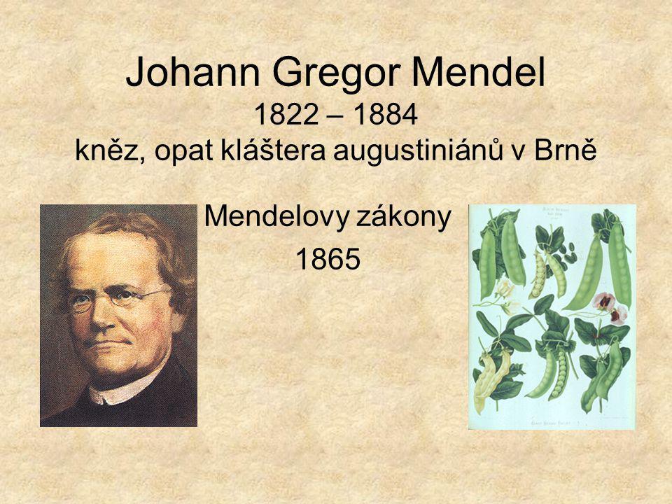 Johann Gregor Mendel 1822 – 1884 kněz, opat kláštera augustiniánů v Brně
