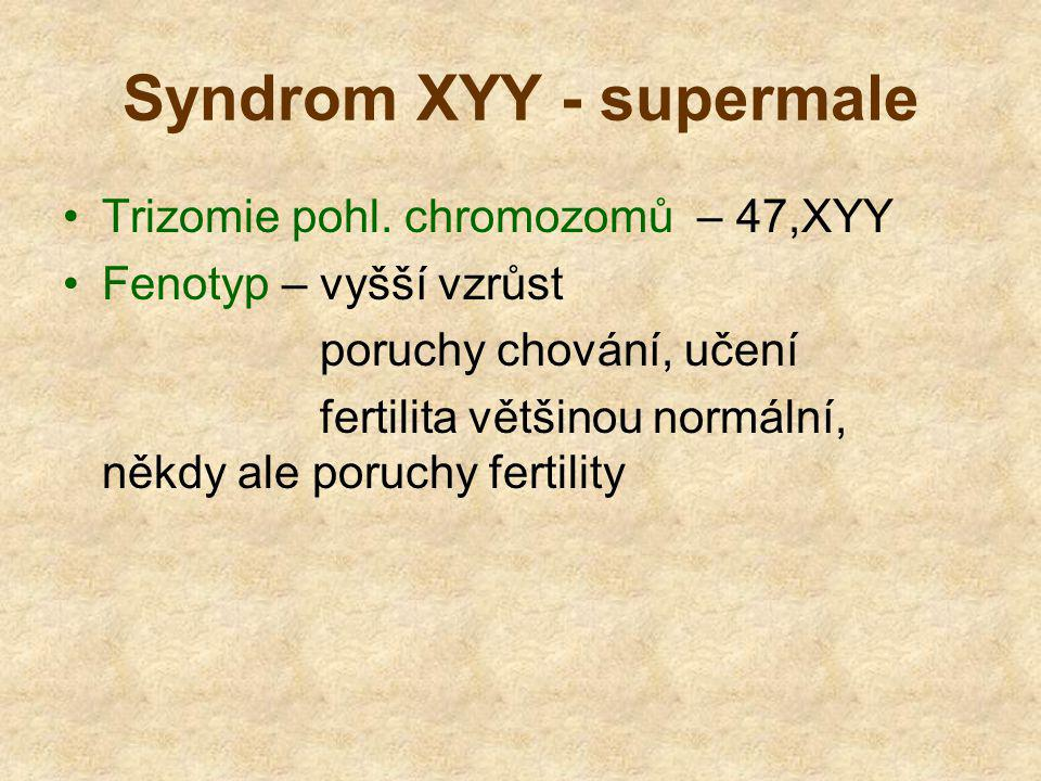 Syndrom XYY - supermale