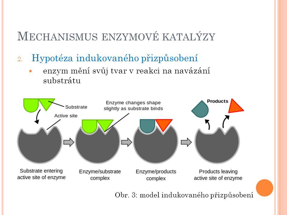 Mechanismus enzymové katalýzy