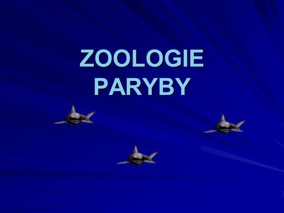 ZOOLOGIE PARYBY