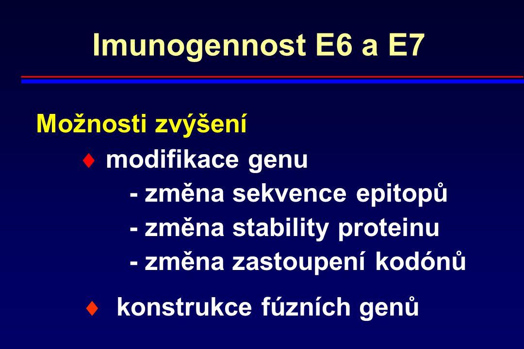 Imunogennost E6 a E7 Možnosti zvýšení  modifikace genu