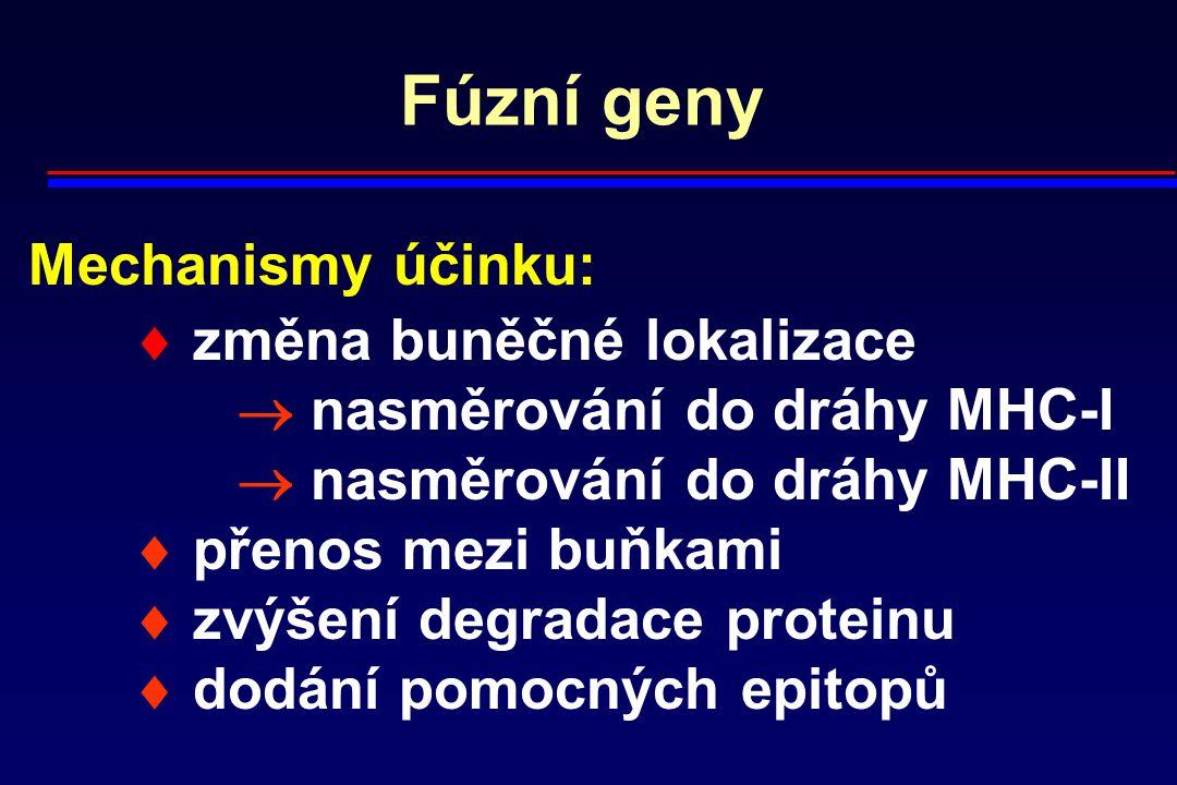 Fúzní geny Mechanismy účinku:  změna buněčné lokalizace